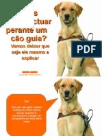 O cão guia