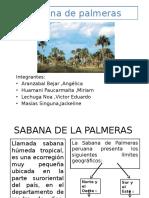 Sabana de Palmeras Expo
