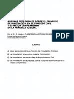 Dialnet-AlgunasReflexionesSobreElPrincipioDeInmediacionEnE-814805.pdf