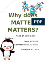 Why Does Matter Matters Sim