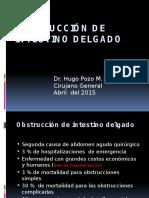 Obstrucción Del Intestino Delgado