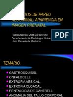 Defectos de Pared Abdominal Prenatal