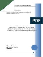 Diagnostico Uso Racional RD 2006.pdf