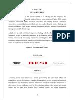 Clg Bfsi Report Final3