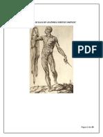 Anatomie-suport Curs Masaj