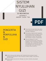 Penyuluhan Gizi Di Indonesia