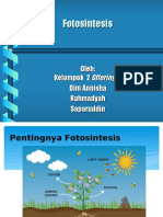 Presentasi Biomol fotosintesis.ppt
