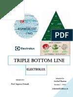 CEM- Triple Bottom Line- Writeup