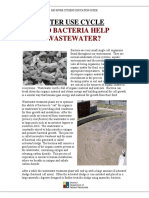 How Bacteria Eat Waste Generic