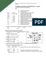 Calcul Dimensionare SPAU 22-SM
