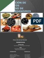 MICROORGANISMOS en La Produccion de Alimentos