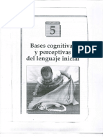 Bases Cognitivas