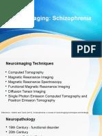 Schizophrenia Neuroimaging