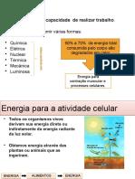 Aula 02- Bioenergética ATP-PC...2017.1.pptx