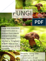 Fungi Kingdom- Short Discussion and Quiz