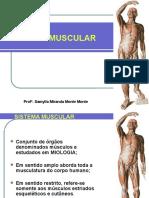 Aula 04 - Sistema Muscular...2017.1.pptx