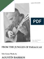 Barrios,Agustin - details.pdf