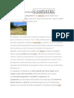 DEFINICIÓN DECAMPESTRE.docx