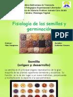 Fisiología de Las Semillas y Germinación k