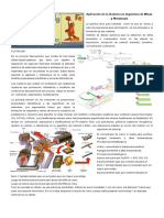 Aplicación de La Química en Ingeniería de Minas y Metalurgia