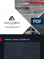 Callinex Presentation Jan 19 2017