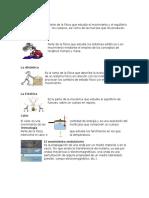 Definiciones e Imagenes Fisica Optica Mecanica y Otras