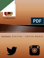 Propuesta_Redes_Tu_Marroncito..pdf