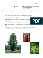 Placement Herbarium - Text Blocks