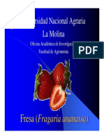 Fresa (Fragaria Vesca)