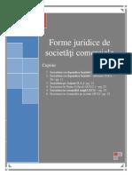 Saptamana 2 - Forme Juridice de Societăţi Comerciale