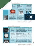 Patología Primitiva de los Huesos Maxilares
