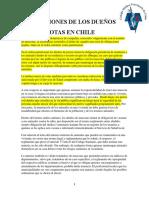 Obligaciones de Los Dueños de Mascotas en Chile