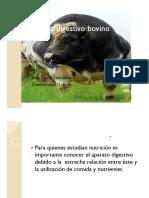 sistemadigestivobovino-130218185355-phpapp02