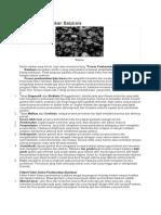 Proses Pembentukan Batubara.docx