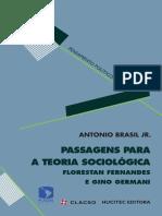 BRASIL JR, Antonio. Passagens Para Teoria Sociologica