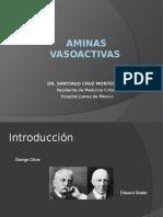 aminas vasoactivas