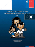 ORIENTACIONES PIE.pdf