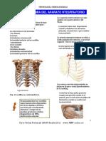 1._Anatomía_del_Ap_respiratorio_PLUS_medica.pdf