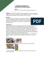 Protocolo Actividad Laboratorio 1