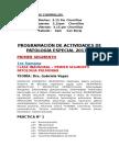 Programacion de Actividades de Patologia ESP 2017I UPSJB 7