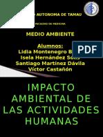Impacto Ambiental en Las Actividades Humanas