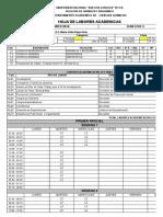 Formato Cargas Facultad (1)
