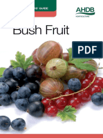 Bush Fruit CWG web.pdf