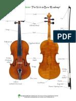 - Violin Cheat Sheet.pdf