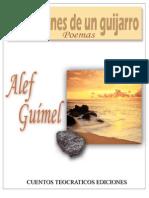 Libro - Reflexiones de Un Guijarro [Alef Guimel]