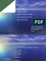 Brain Seminar1