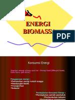 10 PHH-Energi Biomassa
