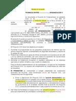 Modelo de Acuerdo