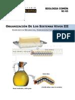 CARBOHIDRATOS Y LIPIDOS.pdf
