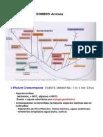 TEMA 15. Dominio Archaea. Phylum Crenarchaeota